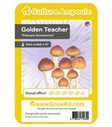 Golden Teacher - ampolla de cultivo