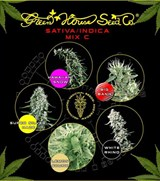 Green House Sativa Indica Mix C