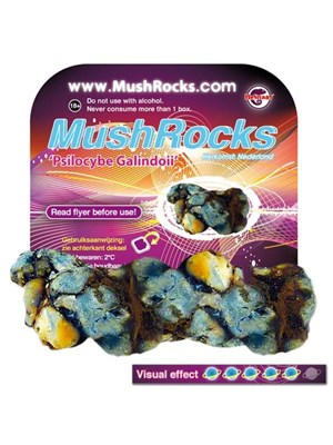 Mushrocks